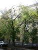 2-комнатная квартира у метро Спортивная (7)