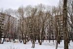 2-комнатная квартира, метро Ясенево (12)